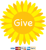Donate Button with Credit Cards